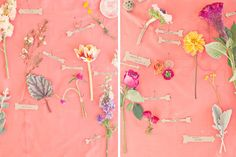 cats, books, arrows, backdrops, color, backgrounds, boutonnieres, flower, seating charts