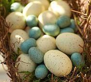 The French Tangerine: ~ robin's egg blue