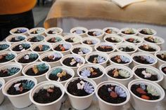 Succulent cupcakes - these were a huge hit at our party!  by Pinterest HQ, via Flickr