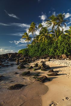 Footprints on the Turtle beach - Oahu, Hawaii  #moving2hawaii @schofieldgah @fortshaftergah 808-389-0489 to find your #hawaiidreamhome
