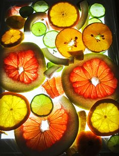 """the language of fruit""-Palisades Preschoool- light table with fruit ≈≈"