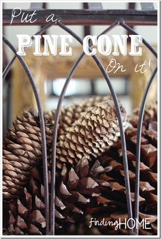 Easy Fall Decorating With Pine Cones - Nothing says fall like pine cones, some really great ideas here!!