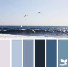 blue painted bedrooms, living rooms, color palettes, bathroom colors, living room colors, design seeds, blue bedroom colors palette, sea, guest rooms