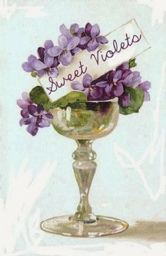 vintage postcards, decoupag, sweetviolet, art, violets, vintag flower, sweet violet, vintage cards, vintage flowers