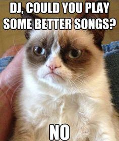 Grumpy DJ #grumpycat #dancing