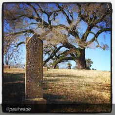 "Get ready to stroll through the #historic Natchez City Cemetery while listening to the fascinating tales of some of the cemetery's most colorful ""residents"" at Serenade in the Cemetery on April 27th. Photo by @Paul Wade"