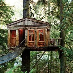 places to stay in seattle, travel treehouse, treehouse hotel washington, tree forts, treehouse point washington