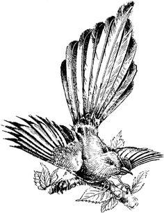 Free Vintage Digital Stamp - Sweet Little Magpie