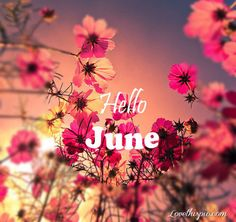 hello june summer quote june