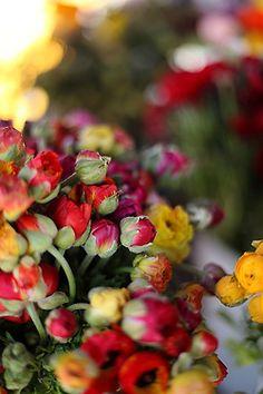 Fresh flowers in the market.