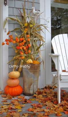 ChiPPy! - SHaBBy!: The LEAVES are FaLLing!*!*! ~ Wisconsin...