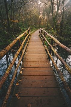 Forest Bridge, Haywards Heath, England