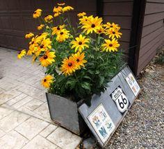 junk garden, toolbox, market garden, planter idea, box planter, tractor
