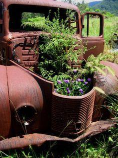 farm, old trucks, yard art, flower pots, planter, flowers, antique cars, garden, country homes