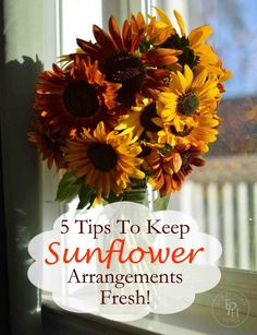 5 Tips To Keep Sunflower Arragnements Fresh!