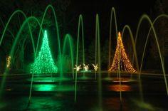 photograph, botan garden, holiday imag, tunnel fountain, garden 2013