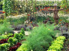 Beautiful dense veggie/flower garden.
