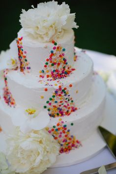 Colorful (confetti?) Cake by Ana Paz Cakes ~ Photography by kallimaphotography.com