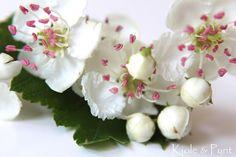 seidenfein 's Dekoblog, Apfelblüten