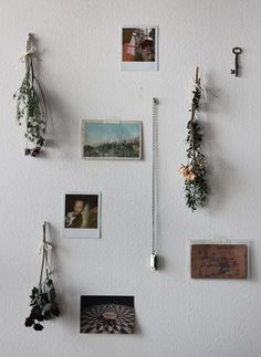 How To Decorate With Dried Flowers: http://blog.freepeople.com/2013/01/diy-decor-decorating-dried-flowers/