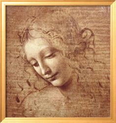 da vinci..love this face ..changes everytime i look at it.    remember this from EVERAFTER?