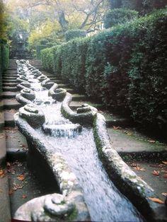modern gardens, water featur, water plant, water gardens, villa lant, lant water, garden design ideas, modern garden design, garden stairs