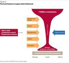 suppli chain, food suppli, chain bottleneck, food justic, food industri