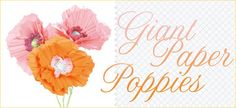 paper poppi, paper flowers, poppies, papers, giant paper