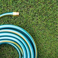 Inside the Human Heart: 10 Fast (and Fun) Facts  The Aorta Is Nearly the Diameter of a Garden Hose