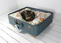 Suitcase Pet Bed  Ode to Suitcases: 20 InnovativeIdeas  www.untravelledpathsblog.wordpress.com