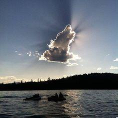 #ChristianKane #Kaniac #wolf
