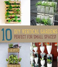DIY Vertical Gardening | 8 Projects for Small Space Gardening. From diyready.com.
