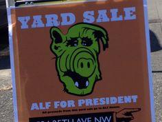 Like if you like yard sales and Alf.