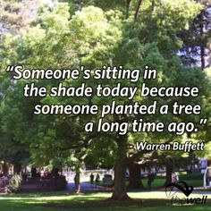 """""""Someone's sitting in the shade today because someone planted a tree a long time ago."""" - Warren Buffet"""