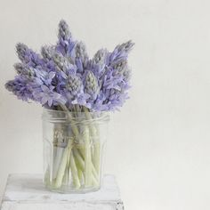 ~ pretty in a jar