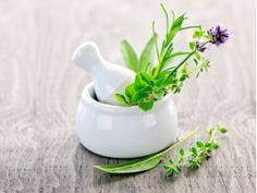 herbs glorious herbs...