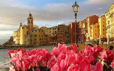 My paternal great-grandparents were from Camogli, Italy, so traveling to the Italian Riviera is a must.