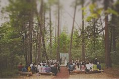 wooded wedding ceremony