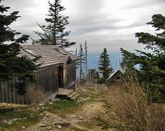 Hiking in the Great Smoky Mountains  - LeConte Lodge