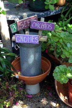 5 Colorful Ideas for the Cool Season Backyard Garden. birdsandblooms.com