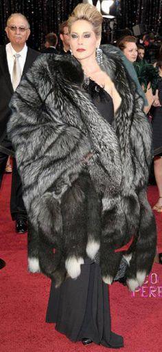 I love silver fox fox fur, beauti fox, silver foxes