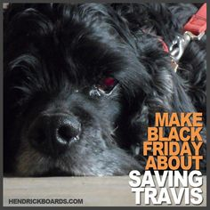 Make Black Friday about saving Travis! One t-shirt purchase will spark a $10 donation towards the eye surgery he desperately needs to prevent complete blindness. You can purchase your t-shirt here: http://www.hendrickboards.com/shop/critical-needs-collection/critical-needs-travis?tracking=4f2ae1226de22 Please repin!