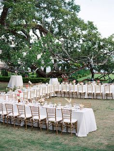 Love the sumple, intimate feel of this wedding, love the table setup and love the colors. Romantic Florida garden wedding | photo by Julie Cate Photography | 100 Layer Cake
