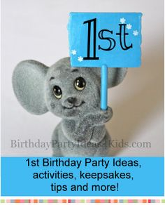 1st Birthday Party Ideas for the First Birthday