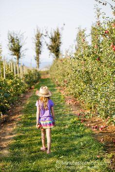 Apple Picking, Pony Rides, Pumpkins and More at the Applebarn Taves Family Farms  #FamilyFun #KidsActivities #ApplePicking #mediapass