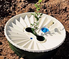 The Groasis Waterboxx looks like a simple bucket. But it does something astounding: It grows trees in the desert.  This may be a good tool for replacing trees lost in last summer's drought!