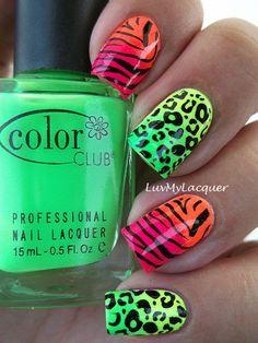 Zebra and Cheeta print colorful nails
