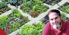Mel Bartholomew's Square Foot Gardening