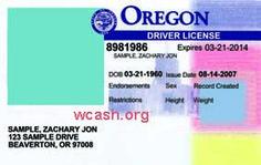Template oregon drivers license editable photoshop file .psd