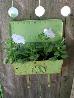 Recycled older style mailbox becomes container garden. I'd love to do this all along the back of the fence line.